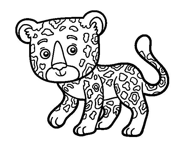Desenho de Guepardo jovem para Colorir