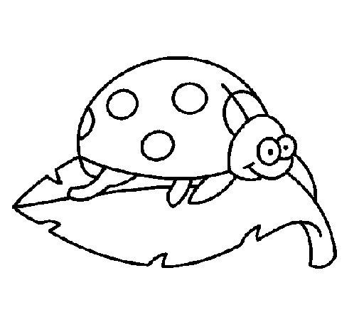 Desenho de Joaninha em cima de uma folha para Colorir