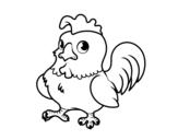 Desenho de Jovem galo para colorear