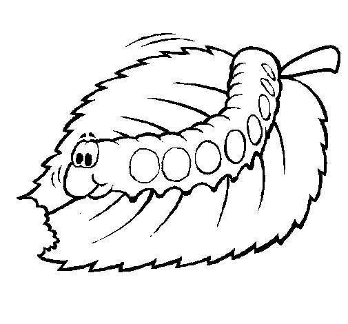 Desenho de Lagarta a comer para Colorir