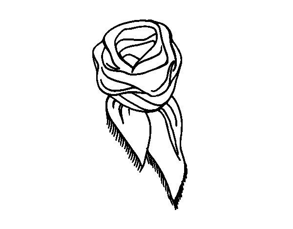 Desenho de Lenço para Colorir