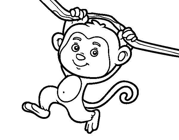Desenho De Macaco Pendurado Em Um Galho Para Colorir