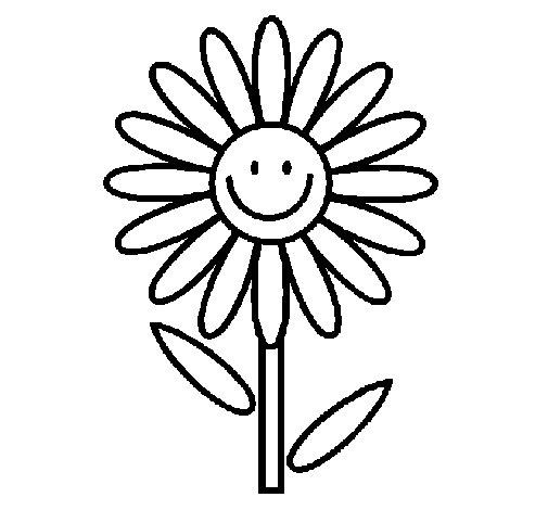 Desenho de Margarida para Colorir
