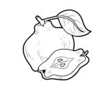 Desenho de Marmelo para colorear