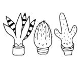 Desenho de Mini cactus para colorear