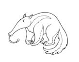 Desenho de O vermilingua para colorear