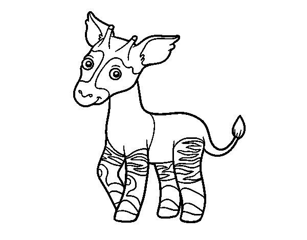 Desenho de Ocapi para Colorir