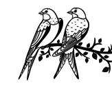 Desenho de Par de pássaros para colorear