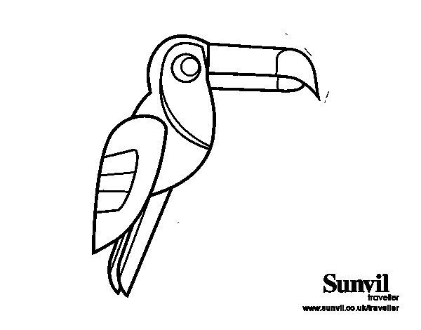 Desenho de Pássaro Tucano para Colorir
