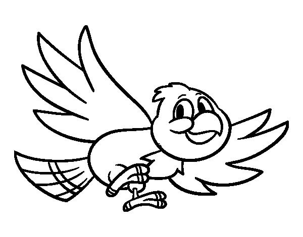 Desenho de Pássaro voando para Colorir
