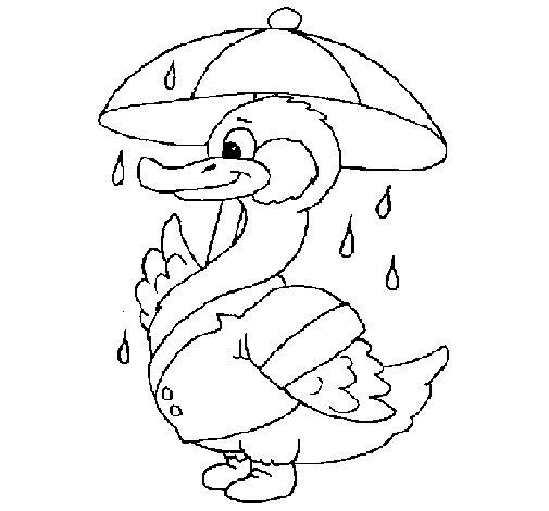 Desenho de Pato sob a chuva para Colorir