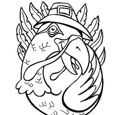 Desenho de Pavão peregrino para Colorir