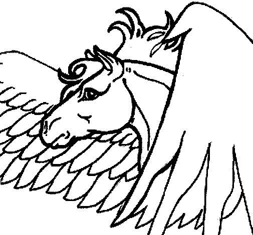 Desenho de Pégaso para Colorir