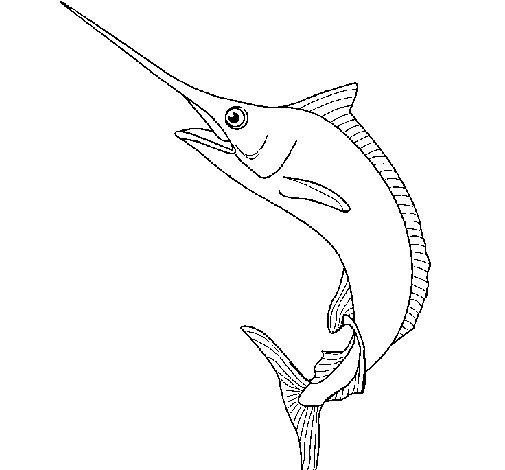 Desenho de Peixe-espada para Colorir