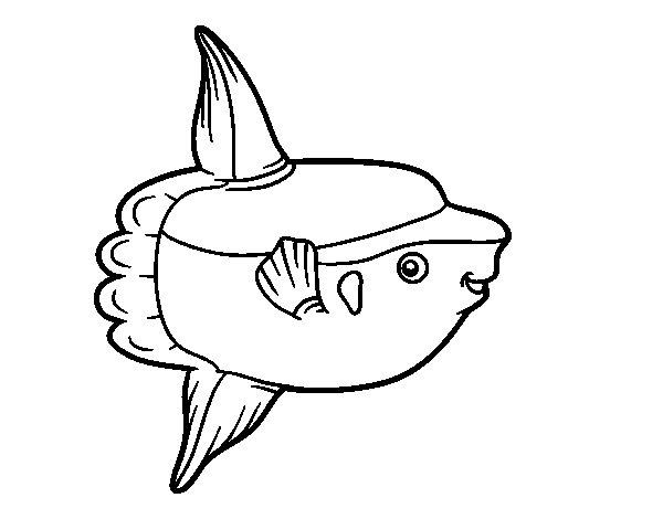 Desenho de Peixe-lua para Colorir