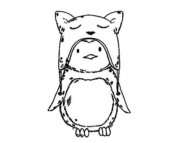 Desenho de Pinguim com chapéu engraçado para Colorir