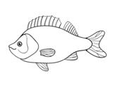 Desenho de Poleiro para colorear