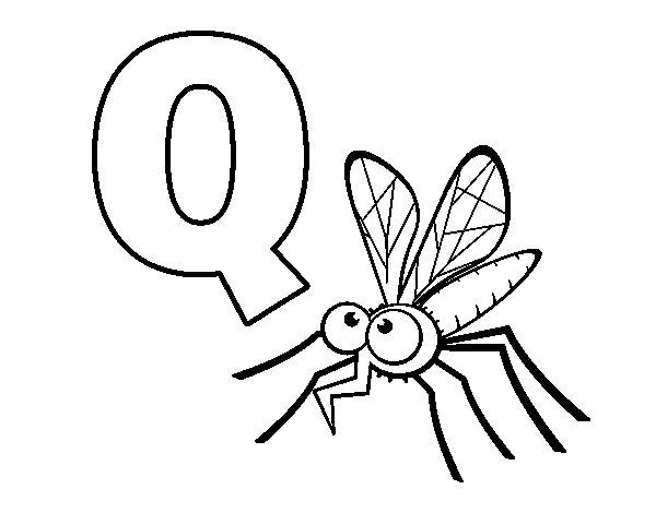 Desenho de Q de Mosquito para Colorir