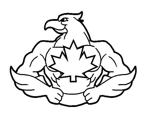 Desenho de Super pássaro para Colorir