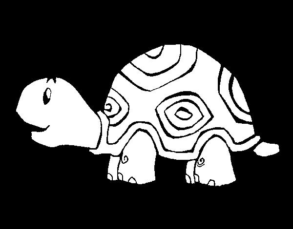 Desenho De Tartaruga Contente Para Colorir