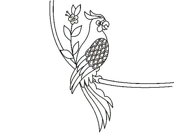 Desenho de Tatuagem de papagaio para Colorir
