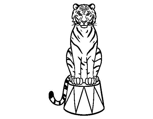 Desenho de Tigre do circo para Colorir