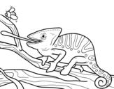 Desenho de Um camaleão com a língua para fora para colorear