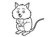 Desenho de Um pequeno criceto para colorear