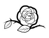Desenho de Uma linda rosa para colorear