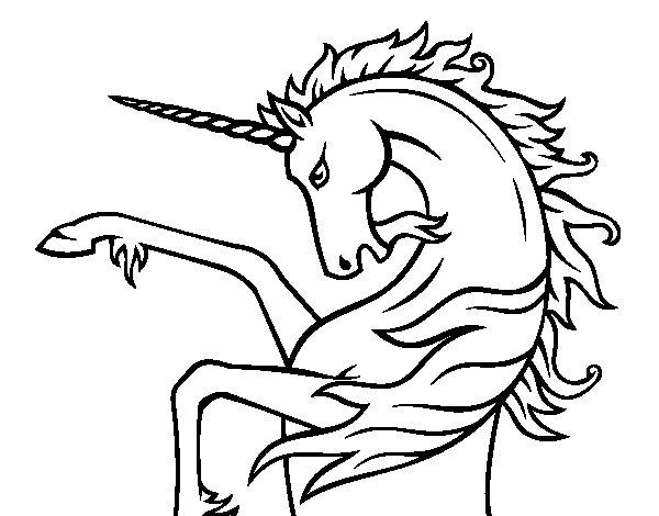 Desenho de Unicórnio selvagem para Colorir