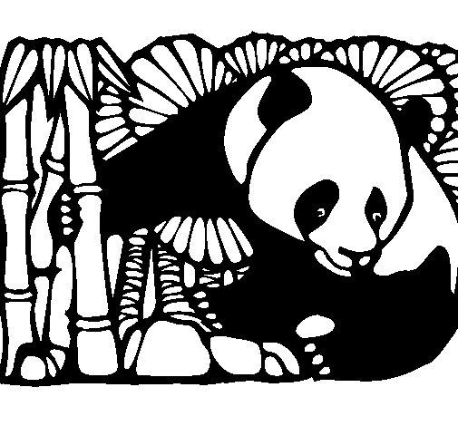 Desenho de urso panda e bambu para colorir - Coloriage de panda kawaii ...