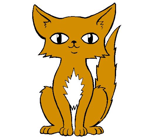 Desenho De Gato Persa Pintado E Colorido Por Usuario Nao