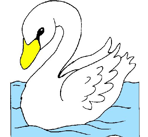 Desenho De Cisne Pintado E Colorido Por Usuario Nao Registrado O