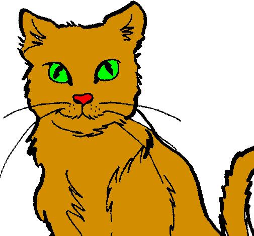 Desenho De Gato Pintado E Colorido Por Usuario Nao Registrado O
