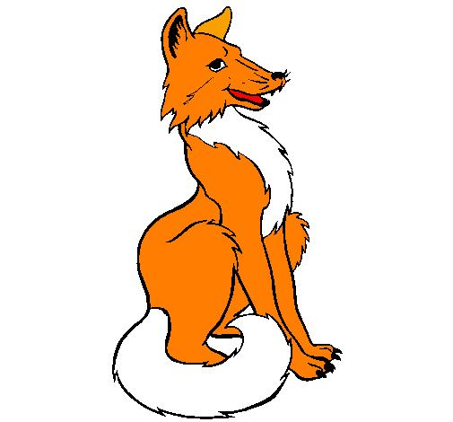 Desenho De Raposa Vermelha Pintado E Colorido Por Usuario Nao
