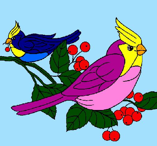 Desenho De Passaros Pintado E Colorido Por Usuario Nao Registrado