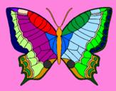 Desenhos De Animais Borboletas Pintados E Coloridos Mas Visitados