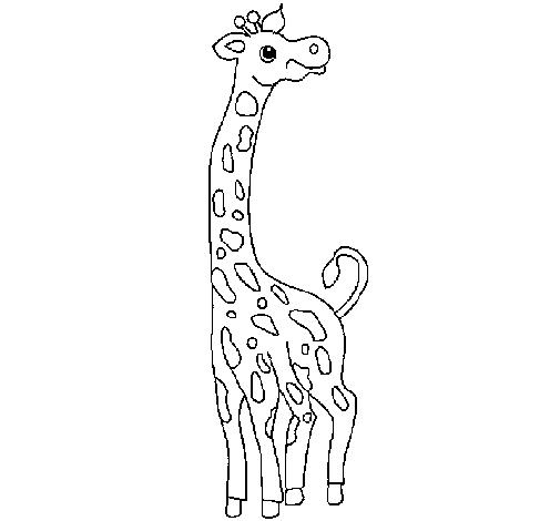 Desenho De Girafa Pintado E Colorido Por Usuario Nao Registrado O