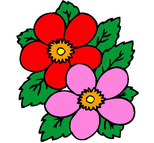 Desenho De Flores Pintado E Colorido Por Usuario Nao Registrado O