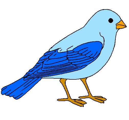 Desenho De Pardal Pintado E Colorido Por Usuario Nao Registrado O