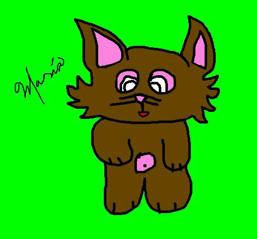 Desenho De Gato 12 Pintado E Colorido Por Usuario Nao Registrado O