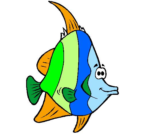 Desenho De Peixe Tropical Pintado E Colorido Por Usuario Nao