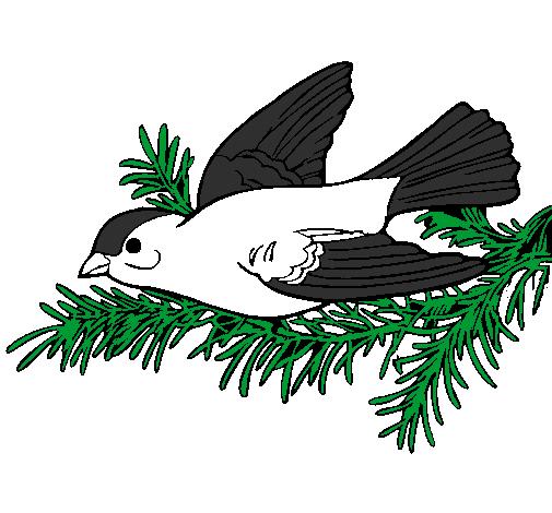 Desenho De Andorinha Pintado E Colorido Por Usuario Nao Registrado