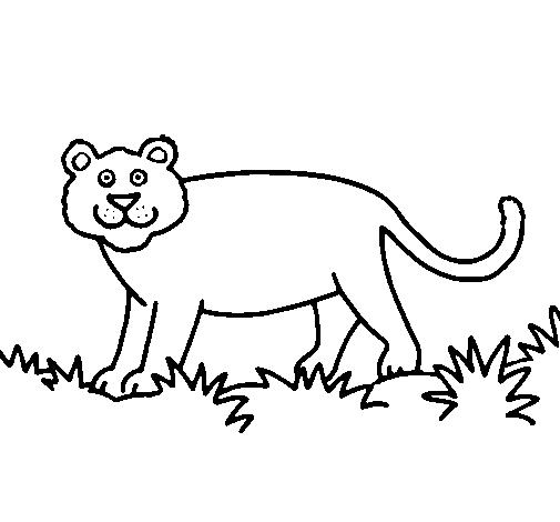 Desenho De Panthera Pintado E Colorido Por Usuario Nao Registrado