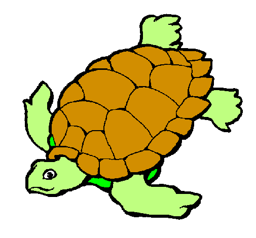 Desenho De Tartaruga Pintado E Colorido Por Usuario Nao Registrado