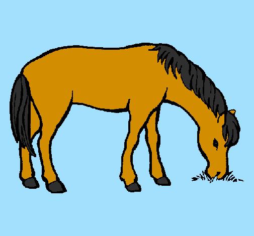 Desenho De Cavalo A Comer Pintado E Colorido Por Usuario Nao