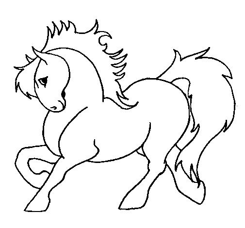 Desenho De Cavalo Robusto Pintado E Colorido Por Usuario Nao