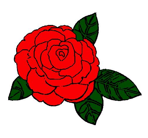 Desenho De Rosa Pintado E Colorido Por Usuario Nao Registrado O