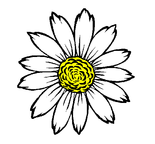 Desenho De Girassol Pintado E Colorido Por Usuario Nao Registrado