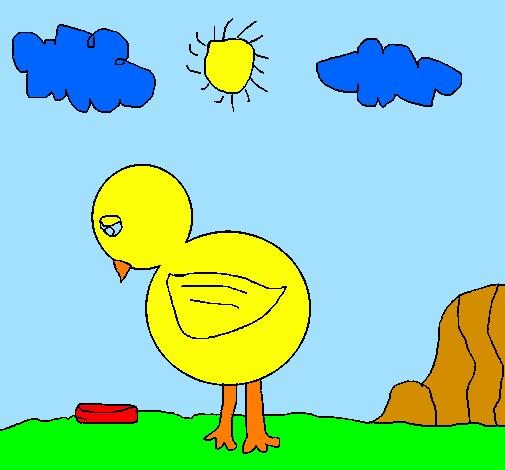 Desenho De Triste Frango Pintado E Colorido Por Usuario Nao